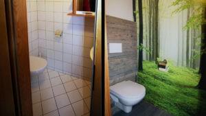 Modernes WC ersetzt altes WC